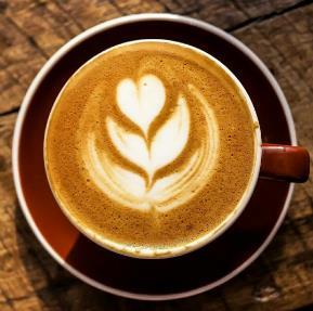 宠域咖啡屋