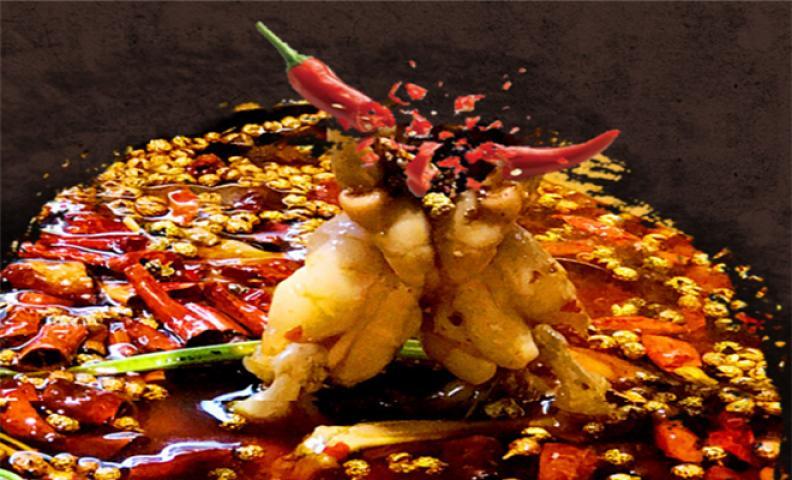厨司令美蛙鱼头加盟