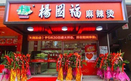 杨国福麻辣烫加盟店