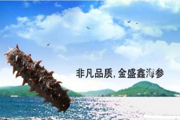金盛鑫海参